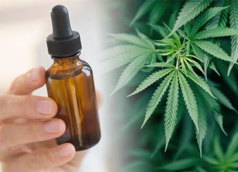 CBD oil – newbie guide