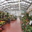 garden center Victorville ca